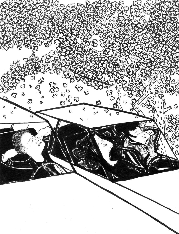 hanami-cars